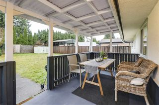 Photo 14: 20338 CHATWIN Avenue in Maple Ridge: Northwest Maple Ridge House for sale : MLS®# R2522941