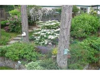 Photo 9:  in VICTORIA: SW Strawberry Vale Single Family Detached for sale (Saanich West)  : MLS®# 366665