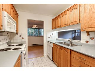 Photo 4: 114 1190 PACIFIC STREET in Coquitlam: North Coquitlam Condo for sale : MLS®# R2004781