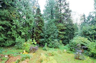 Photo 4: 15550 106 Ave in Surrey: Guildford House for sale : MLS®# R2124641