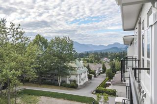 "Photo 15: 502 22315 122 Avenue in Maple Ridge: East Central Condo for sale in ""The Emerson"" : MLS®# R2408588"