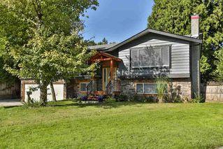 "Main Photo: 20837 STONEY Avenue in Maple Ridge: Southwest Maple Ridge House for sale in ""Southwest Maple Ridge"" : MLS®# R2410118"