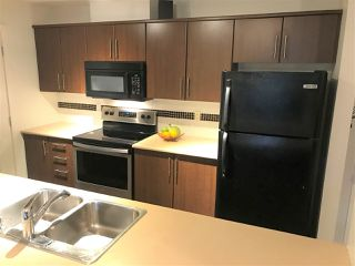 "Photo 15: 419 12248 224 Street in Maple Ridge: East Central Condo for sale in ""URBANO"" : MLS®# R2511898"