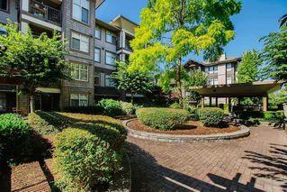 "Photo 31: 419 12248 224 Street in Maple Ridge: East Central Condo for sale in ""URBANO"" : MLS®# R2511898"