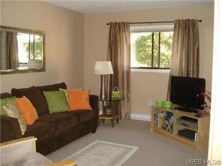 Photo 10: 4 4041 Saanich Rd in VICTORIA: SE High Quadra Row/Townhouse for sale (Saanich East)  : MLS®# 618278
