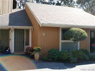 Photo 1: 4 4041 Saanich Rd in VICTORIA: SE High Quadra Row/Townhouse for sale (Saanich East)  : MLS®# 618278