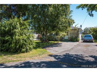 Photo 14: 131 Crease Ave in VICTORIA: SW Gateway Single Family Detached for sale (Saanich West)  : MLS®# 649228