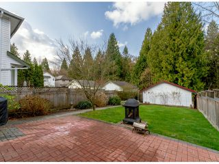 Photo 20: 8747 206TH ST in Langley: Walnut Grove House for sale : MLS®# F1407420