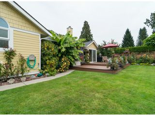Photo 19: 12630 24A AV in Surrey: Crescent Bch Ocean Pk. House for sale (South Surrey White Rock)  : MLS®# F1423010