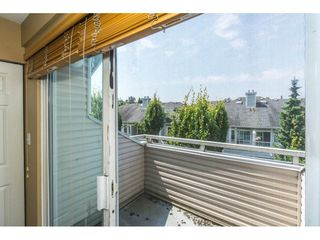 Photo 18: 28 9036 208 Street in Langley: Walnut Grove Townhouse for sale : MLS®# R2293277