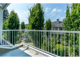 Photo 20: 28 9036 208 Street in Langley: Walnut Grove Townhouse for sale : MLS®# R2293277