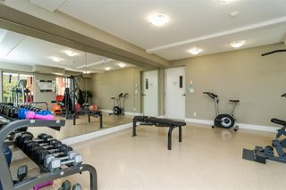 Photo 19: 202 2233 MCKENZIE ROAD in Abbotsford: Central Abbotsford Condo for sale : MLS®# R2341086