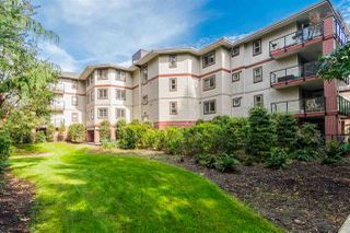 Photo 20: 202 2233 MCKENZIE ROAD in Abbotsford: Central Abbotsford Condo for sale : MLS®# R2341086