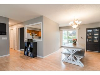 Photo 6: 3826 BALSAM Crescent in Abbotsford: Central Abbotsford House for sale : MLS®# R2407046
