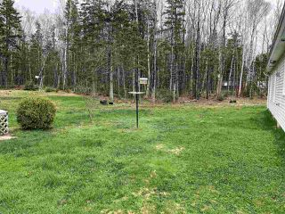 Photo 17: 533 FOREST GLADE Road in Forest Glade: 400-Annapolis County Residential for sale (Annapolis Valley)  : MLS®# 202007642