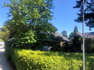 Photo 3: 481 W 17 Avenue in Vancouver: Cambie House for sale (Vancouver West)