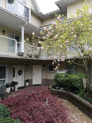 """Photo 26: 225 4155 SARDIS Street in Burnaby: Central Park BS Townhouse for sale in """"SARDIS COURT"""" (Burnaby South)  : MLS®# R2479839"""
