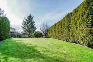 Photo 19: 14218 86B Avenue in Surrey: Bear Creek Green Timbers House for sale : MLS®# R2482476