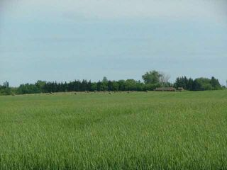 Photo 3: 0 A51069 HWY 814 Highway: Rural Leduc County Agri-Business for sale : MLS®# E1019797