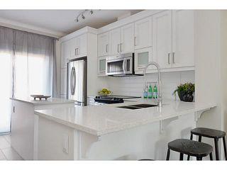 Photo 4: # 9 10151 240TH ST in Maple Ridge: Albion Condo for sale : MLS®# V1041261