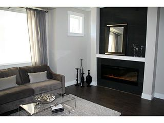 Photo 7: # 9 10151 240TH ST in Maple Ridge: Albion Condo for sale : MLS®# V1041261