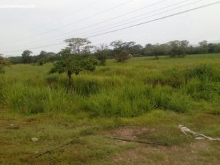 Photo 1:  in Penonome: Farm for sale (Rio Grande)  : MLS®# ACI - PJ