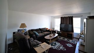 Photo 13: 3 Meadow Drive in Edmonton: Zone 42 Mobile for sale : MLS®# E4194777