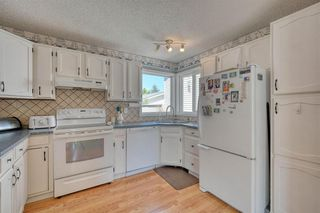 Photo 18: 175 MIDBEND Crescent SE in Calgary: Midnapore Detached for sale : MLS®# A1032788
