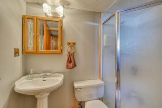 Photo 40: 175 MIDBEND Crescent SE in Calgary: Midnapore Detached for sale : MLS®# A1032788