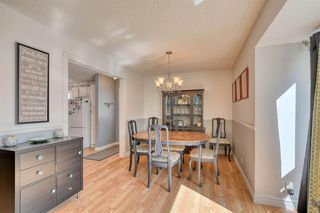 Photo 13: 175 MIDBEND Crescent SE in Calgary: Midnapore Detached for sale : MLS®# A1032788