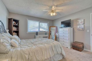 Photo 26: 175 MIDBEND Crescent SE in Calgary: Midnapore Detached for sale : MLS®# A1032788
