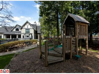 """Photo 10: 19 20875 80TH Avenue in Langley: Willoughby Heights Townhouse for sale in """"Pepperwood"""""""