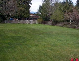 Photo 8: 14479 105A AV in Surrey: Guildford House for sale (North Surrey)  : MLS®# F2608580