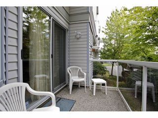 "Photo 41: 105 20240 54A Avenue in Langley: Langley City Condo for sale in ""Arbutus Court"" : MLS®# F1315776"
