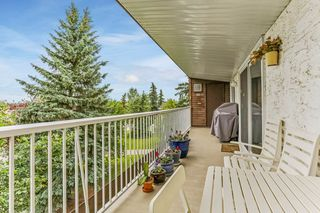 Photo 26: 311 14810 51 Avenue in Edmonton: Zone 14 Condo for sale : MLS®# E4165704