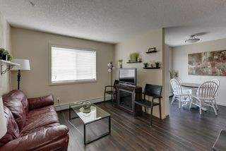 Photo 4: 327 504 ALBANY Way in Edmonton: Zone 27 Condo for sale : MLS®# E4210892