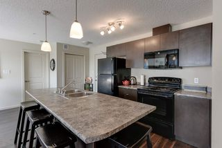 Photo 6: 327 504 ALBANY Way in Edmonton: Zone 27 Condo for sale : MLS®# E4210892