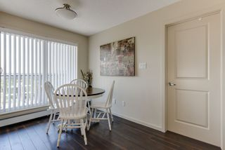 Photo 16: 327 504 ALBANY Way in Edmonton: Zone 27 Condo for sale : MLS®# E4210892