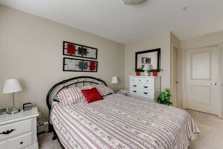 Photo 17: 327 504 ALBANY Way in Edmonton: Zone 27 Condo for sale : MLS®# E4210892