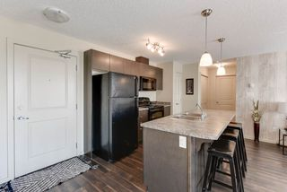 Photo 8: 327 504 ALBANY Way in Edmonton: Zone 27 Condo for sale : MLS®# E4210892