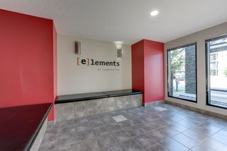 Photo 3: 327 504 ALBANY Way in Edmonton: Zone 27 Condo for sale : MLS®# E4210892