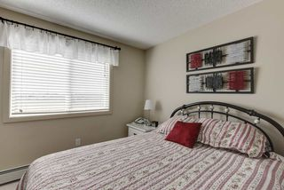 Photo 15: 327 504 ALBANY Way in Edmonton: Zone 27 Condo for sale : MLS®# E4210892