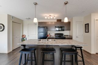 Photo 9: 327 504 ALBANY Way in Edmonton: Zone 27 Condo for sale : MLS®# E4210892