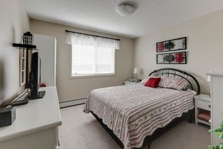 Photo 21: 327 504 ALBANY Way in Edmonton: Zone 27 Condo for sale : MLS®# E4210892