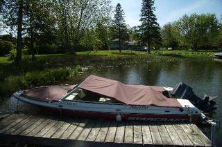 Photo 4: 43 Cedar Bay Road in Kawartha Lakes: Rural Carden House (Bungalow) for sale : MLS®# X2544328