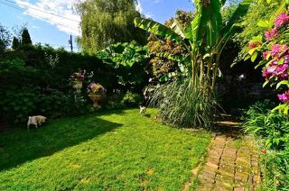 Photo 14: 3635 W 21ST Avenue in Vancouver: Dunbar House for sale (Vancouver West)  : MLS®# V1011902