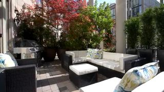 Photo 8:  in Vancouver: Downtown Condo for rent : MLS®# AR012