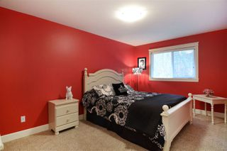 Photo 19: 12433 MCNUTT ROAD in Maple Ridge: Northeast House for sale : MLS®# R2148393