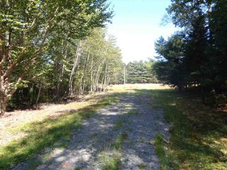 Photo 3: Lot C & D Cove Road in Maders Cove: 405-Lunenburg County Vacant Land for sale (South Shore)  : MLS®# 201920963