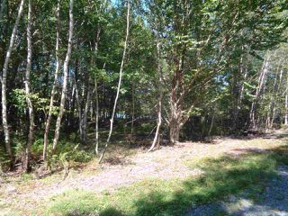 Photo 2: Lot C & D Cove Road in Maders Cove: 405-Lunenburg County Vacant Land for sale (South Shore)  : MLS®# 201920963